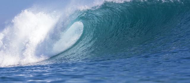 Joint Future Work – Ein Tsunami verändert die Arbeitswelt der Zukunft